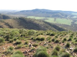Horseshoe Rim 4WD Adventure Track - Northern Rivers Accommodation