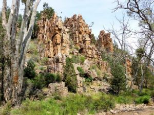 Warren Gorge - Northern Rivers Accommodation