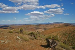 Arden Hills 4WD Track. - Northern Rivers Accommodation