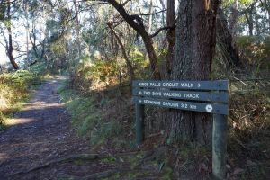 Arthurs Seat to Kings Falls Walk - Northern Rivers Accommodation