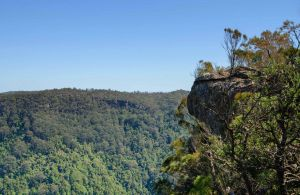 Cooks Nose Walking Track - Northern Rivers Accommodation