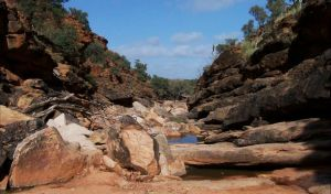 Homestead Gorge trail - Northern Rivers Accommodation