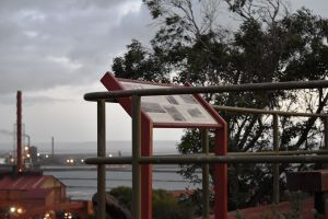 Hummock Hill Lookout - Northern Rivers Accommodation