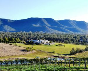 Grapevines Boutique Accommodation - Northern Rivers Accommodation